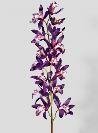 41in Deep Purple Dendrobium Orchid