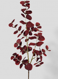 34in Burgundy Eucalyptus Pick