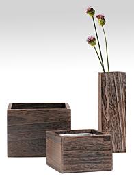 3x10in, 6x6x4in, & 8x8x6in Kiri Wood Vases