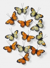 4 1/2in Yellow & Orange Butterflies, Set of 12 24909