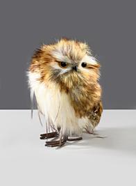 6in Baby Owl