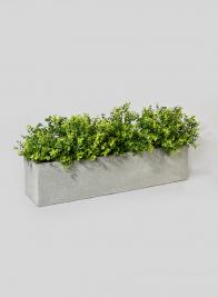 31 1/2in Ficonstone Window Box