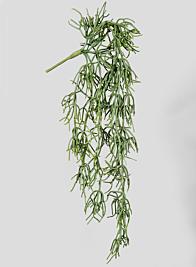 31in Pensil Cactus