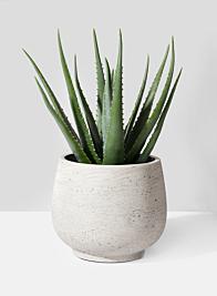 9 1/2in Round Grey Cement Pot