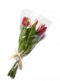 Red & Cream Tulip Flower Bundle