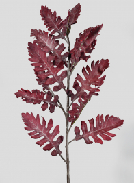 30in Burgundy Dusty Miller