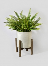14 1/4in Round Ficonstone Floor Pot With Brown Acacia Wood Legs