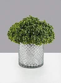 5 1/4 X 6in Diamond Cut Glass Cylinder