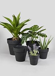 6in - 12in Black Standard Plastic Pots