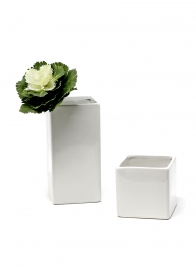 3x6in Gloss White Ceramic Square, Set of 2