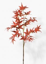 34in Fall Japanese Maple Leaf Branch