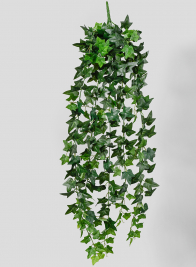 27in Dark Green Ivy Hanging Bush