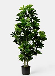 fake Schefflera umbrella tree