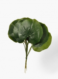 Green Leaf,, Set of 12