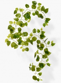 76in Pothos Garland