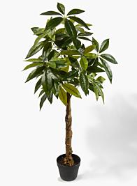47in Money Tree Plant