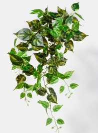 32in Marble Pothos Hanging Bush