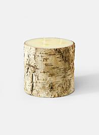 6 x 6in Birch Bark Pillar