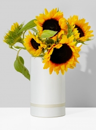 7in White Ceramic Cylinder Vase