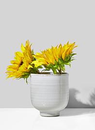 4in Glazed Ceramic Pedestal Bowl, Set of 2
