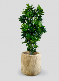 16in Wood Cylinder Planter