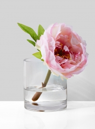 3 1/2 x 4in Clear Glass Cylinder Vase