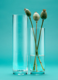 4x15in Glass Cylinder