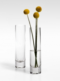 7 1/2in Glass Bud Vase
