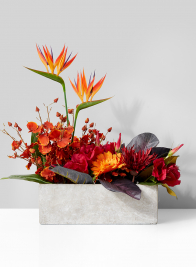 cement vase with tropical orange floral arrangement