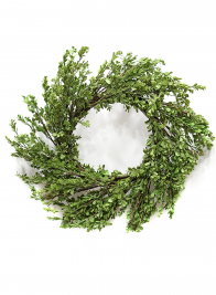 32in Boxwood Wreath