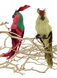 burlap parrot