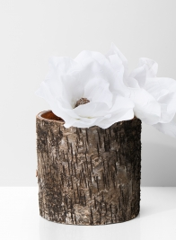 6in Birch Bark Finish Glass Vase