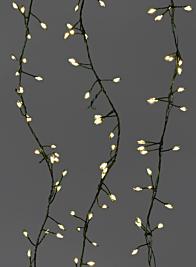 240 Warm White Fairy Lights On Green Cord