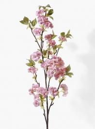 50in Pink Cherry Blossom Branch