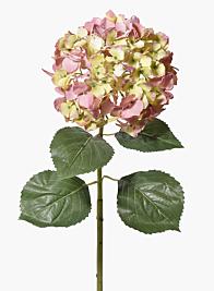 31in Pink & Green Hydrangea