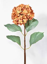 31in Burnt Orange Hydrangea