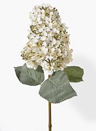 20in White Panicle Hydrangea