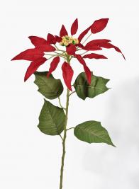 33in Slim Petal Red Poinsettia