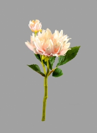 13in Light Pink Dahlia