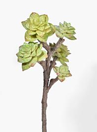 19in Green Succulent Pick