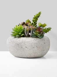 Lava Rock Pot