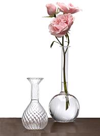 Teardrop & Test Tube Bud Vases