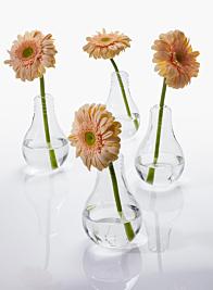light bulb shaped glass vases