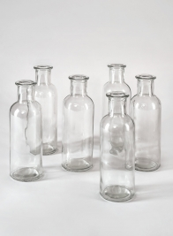 Clear Glass Bottle Bud Vase, Set of 6