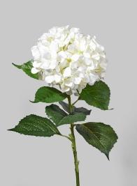 44in Giant White Hydrangea