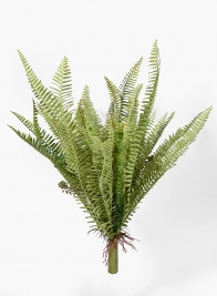 25in Leather Fern Bush