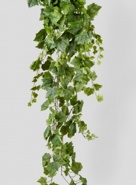 5ft Grape Ivy Hanger