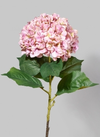 42in Giant Pink Hydrangea