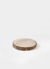 6in Paulownia Wood Trunk Slice