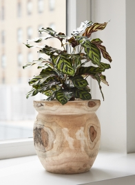 10in Paulownia Wood Fishbowl Pot
